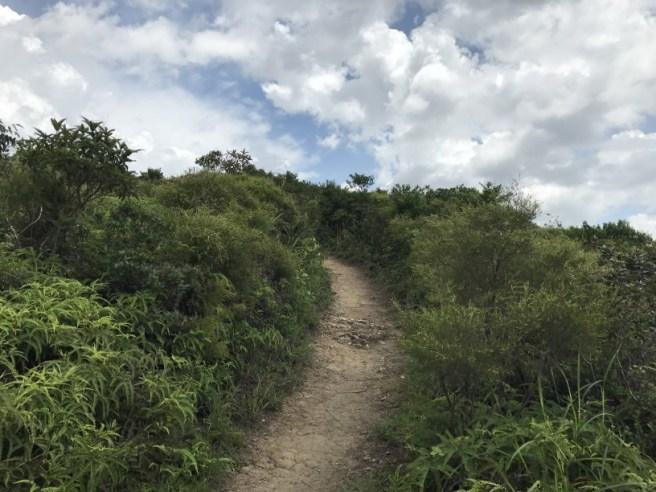 Hiking 24.6.17 Kiu Tsui (6)