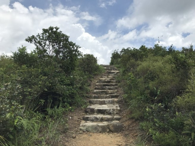 Hiking 24.6.17 Kiu Tsui (7)