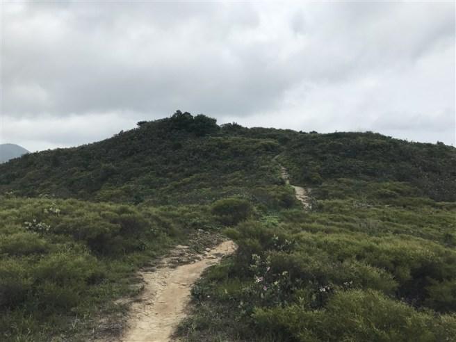 Hiking 4.6.17 Lo Tei Tun (13)