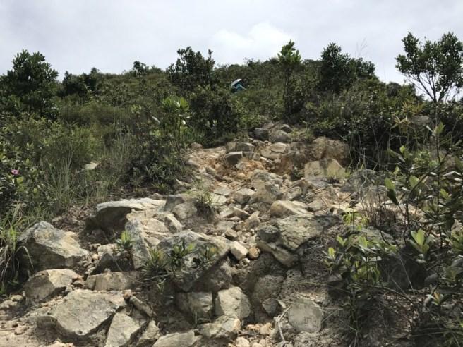 Hiking 1.7.17 Tiu Tang Lung (13)