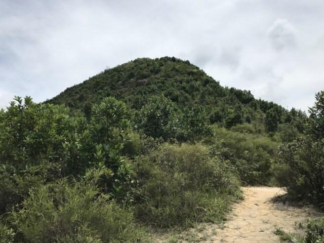 Hiking 1.7.17 Tiu Tang Lung (17)
