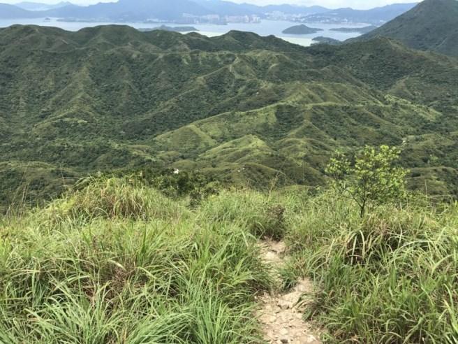 Hiking 1.7.17 Tiu Tang Lung (27)