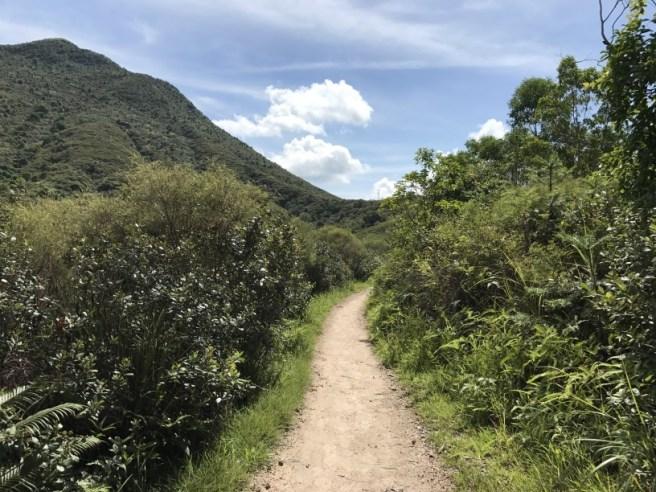 Hiking 1.7.17 Tiu Tang Lung (3)