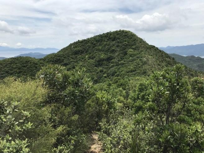 Hiking 1.7.17 Tiu Tang Lung (35)