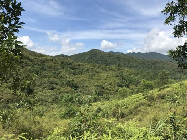 Hiking 1.7.17 Tiu Tang Lung (4)