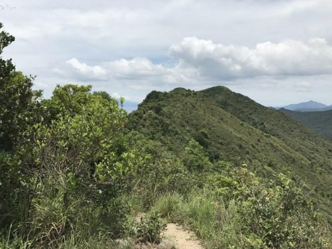 Hiking 1.7.17 Tiu Tang Lung (40)