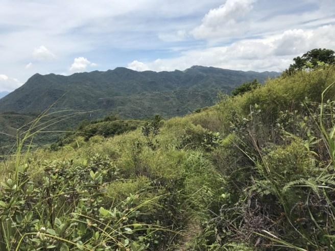 Hiking 1.7.17 Tiu Tang Lung (44)