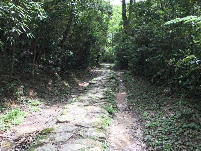 Hiking 1.7.17 Tiu Tang Lung (46)