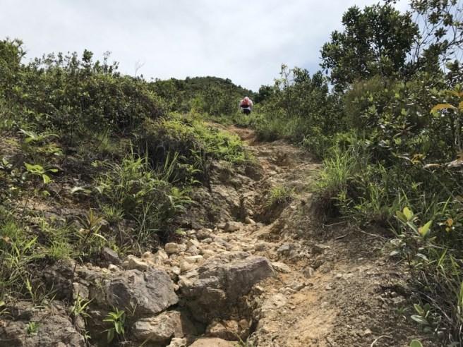 Hiking 1.7.17 Tiu Tang Lung (9)