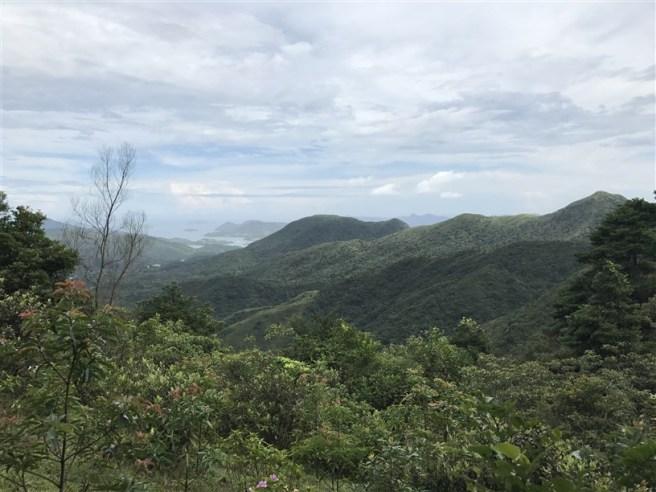 hiking 15.7.17 Nga Yee Shek Shan (16)