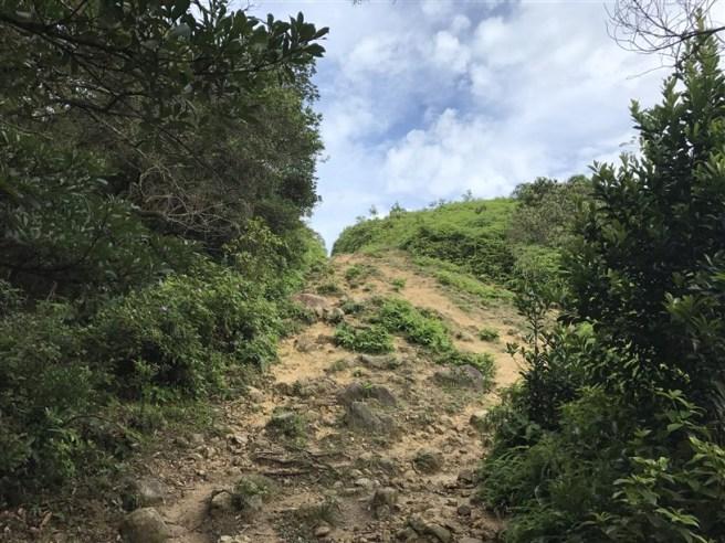 hiking 15.7.17 Nga Yee Shek Shan (17)
