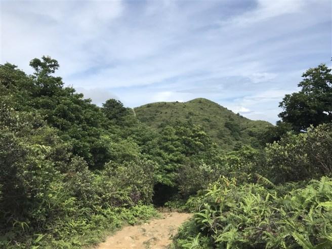 hiking 15.7.17 Nga Yee Shek Shan (24)