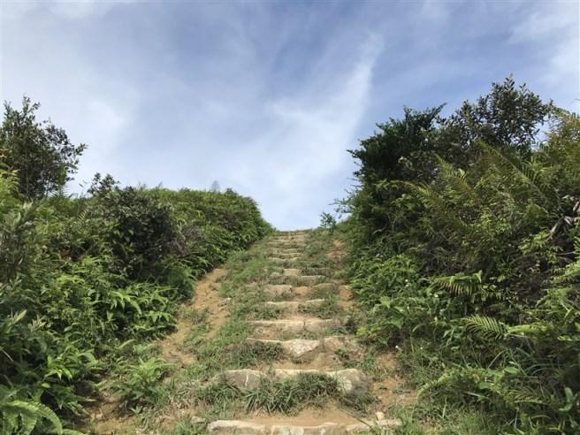 hiking 15.7.17 Nga Yee Shek Shan (25)