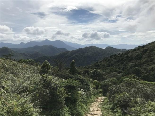hiking 15.7.17 Nga Yee Shek Shan (26)