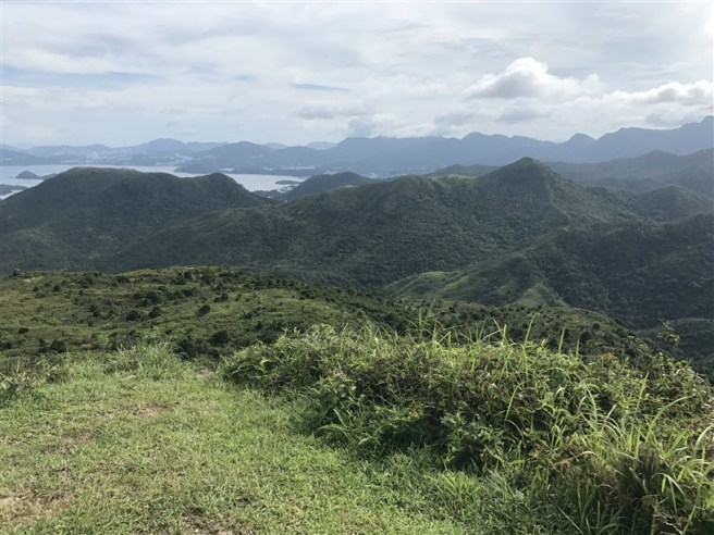 hiking 15.7.17 Nga Yee Shek Shan (35)