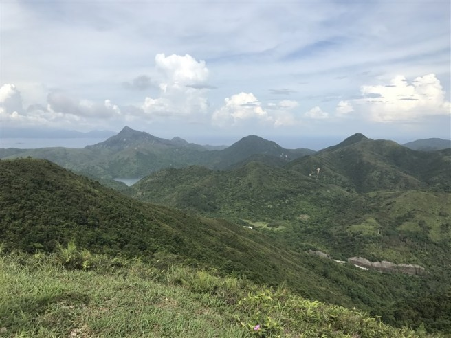 hiking 15.7.17 Nga Yee Shek Shan (38)