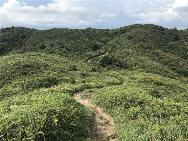 hiking 15.7.17 Nga Yee Shek Shan (39)