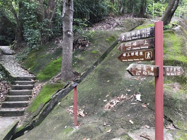 hiking 15.7.17 Nga Yee Shek Shan (4)