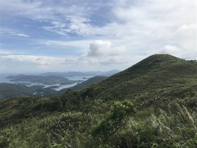 hiking 15.7.17 Nga Yee Shek Shan (40)