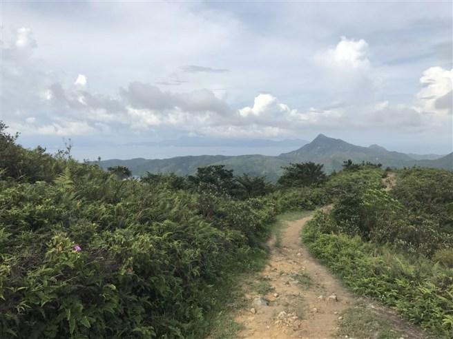 hiking 15.7.17 Nga Yee Shek Shan (41)