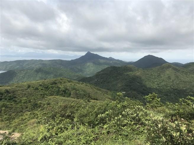 hiking 15.7.17 Nga Yee Shek Shan (45)