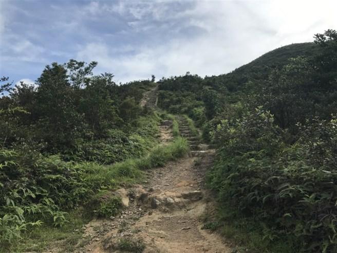 hiking 15.7.17 Nga Yee Shek Shan (47)