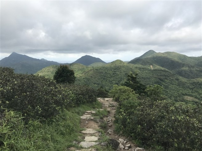 hiking 15.7.17 Nga Yee Shek Shan (48)