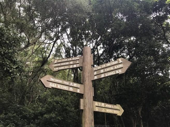 hiking 15.7.17 Nga Yee Shek Shan (49)