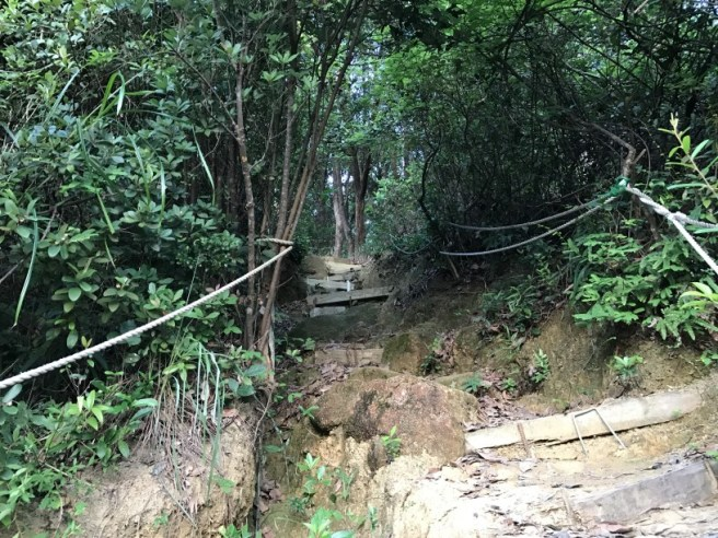 Hiking 28.7.17 Shum Wan Shan (23)