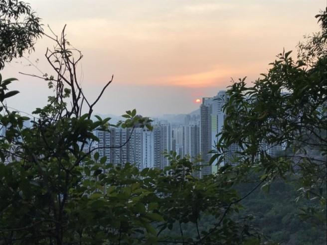 Hiking 28.7.17 Shum Wan Shan (24)