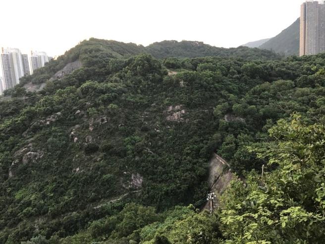 hiking-28-7-17-shum-wan-shan-30