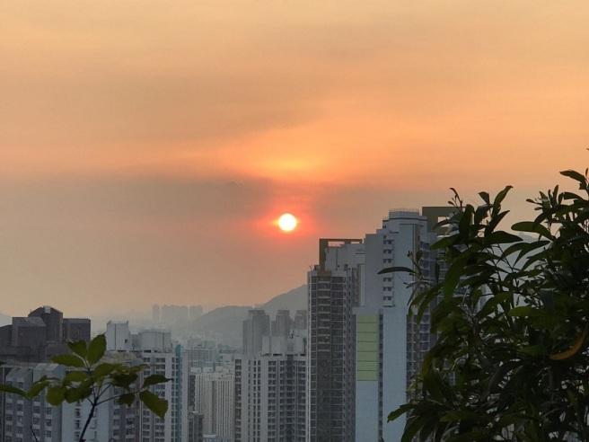 Hiking 28.7.17 Shum Wan Shan (31)