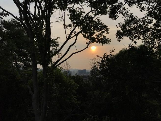 Hiking 28.7.17 Shum Wan Shan (6)