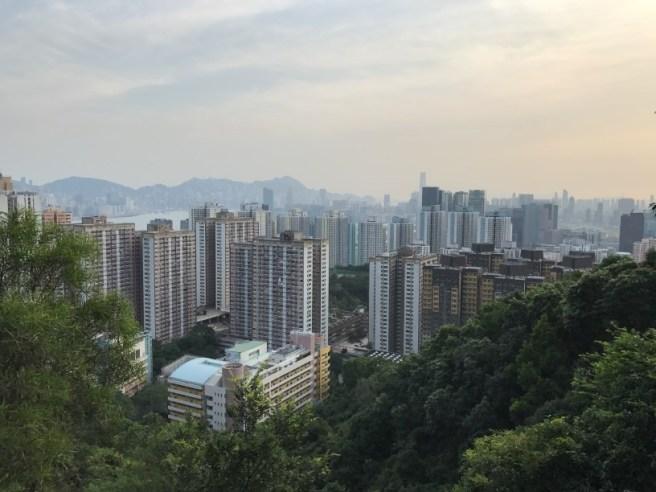 Hiking 28.7.17 Shum Wan Shan (7)