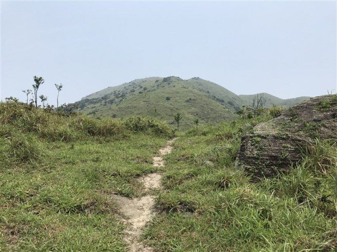 Hiking 30.7.2017 Nei Lak Shan (12)