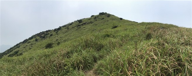 Hiking 30.7.2017 Nei Lak Shan (21)