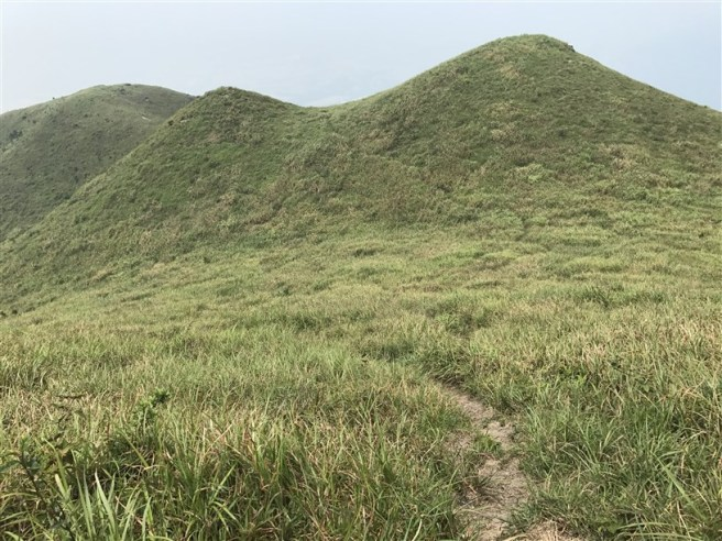 Hiking 30.7.2017 Nei Lak Shan (39)