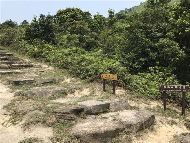 Hiking 30.7.2017 Nei Lak Shan (4)