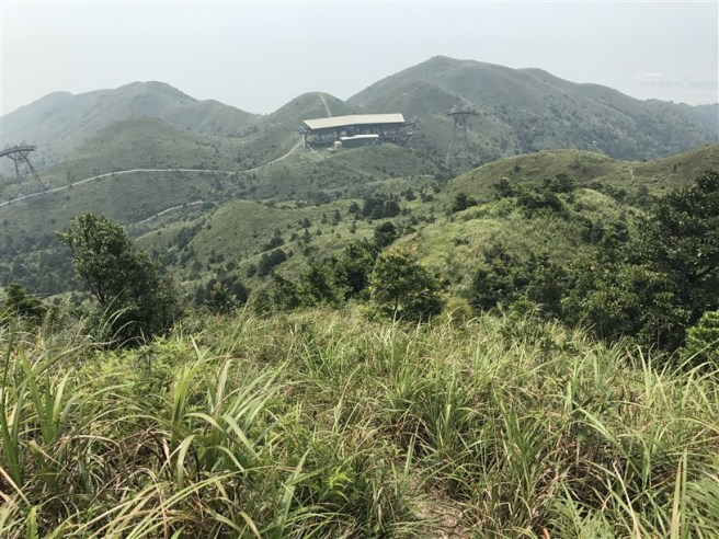 Hiking 30.7.2017 Nei Lak Shan (47)