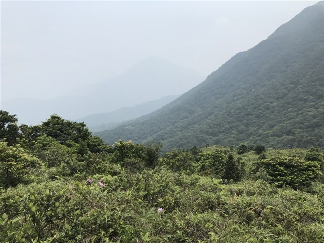Hiking 30.7.2017 Nei Lak Shan (5)