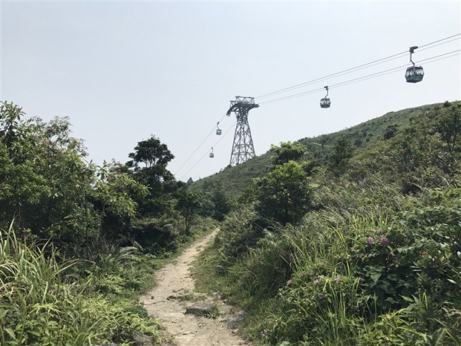 Hiking 30.7.2017 Nei Lak Shan (52)