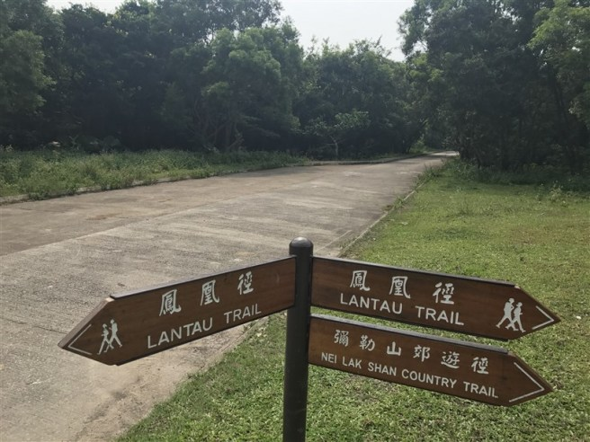 Hiking 30.7.2017 Nei Lak Shan (61)