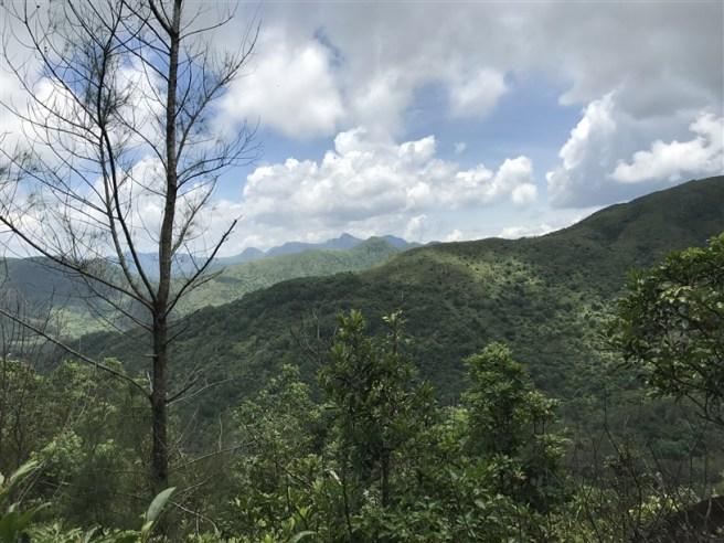 Hiking 9.7.17 Ngau Wu Tun (12)
