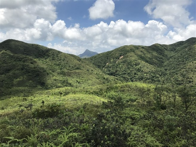 Hiking 9.7.17 Ngau Wu Tun (15)