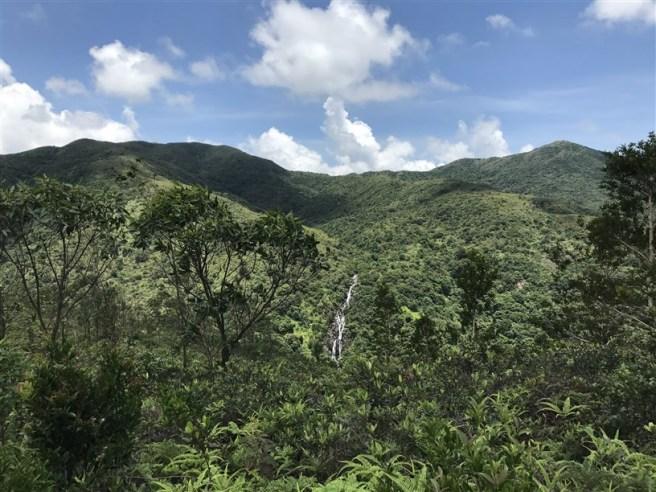 Hiking 9.7.17 Ngau Wu Tun (16)