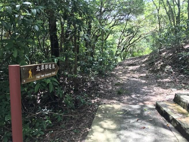 Hiking 9.7.17 Ngau Wu Tun (2)