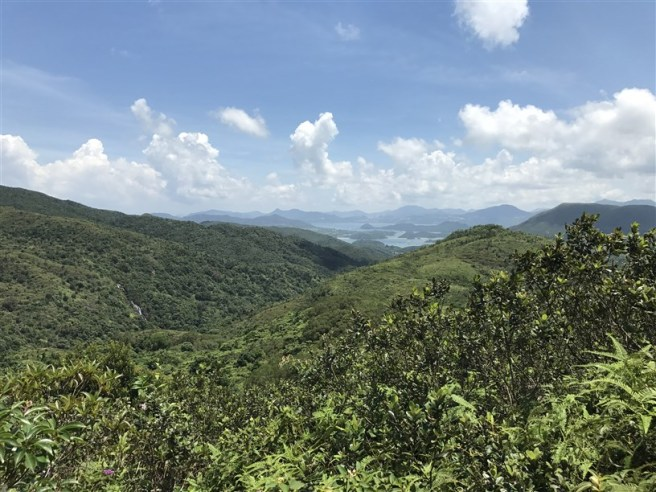 Hiking 9.7.17 Ngau Wu Tun (20)