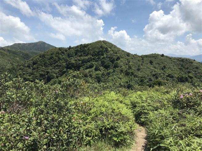 Hiking 9.7.17 Ngau Wu Tun (26)