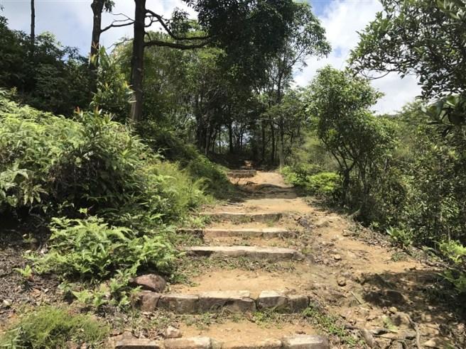 Hiking 9.7.17 Ngau Wu Tun (3)