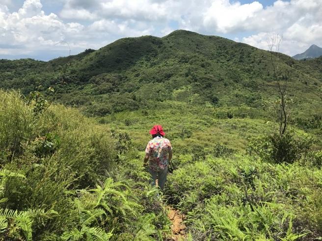 Hiking 9.7.17 Ngau Wu Tun (31)